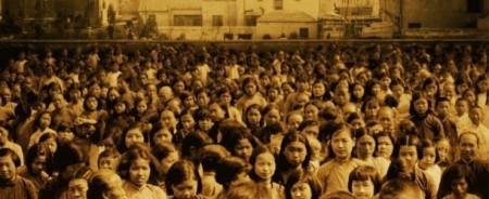 Nanking 7